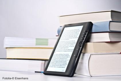 Rund um Friederickes Bücherblog
